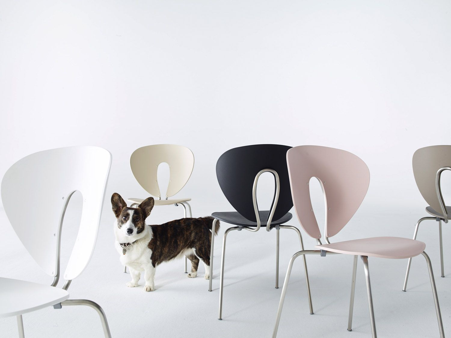Light design globus chair comfortable and stacking seating