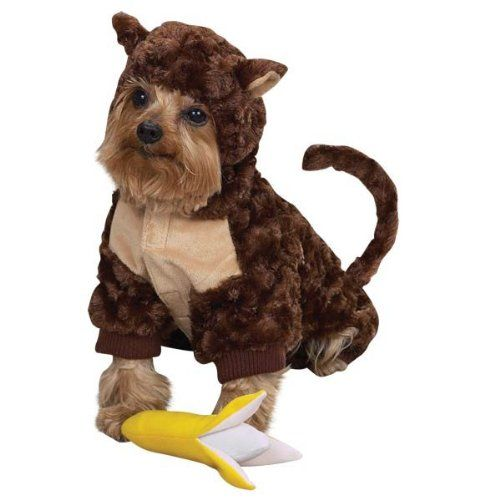 Unique Dog Halloween Costumes Pet Costumes Dog Halloween