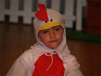 Little Red Hen Costume Idea