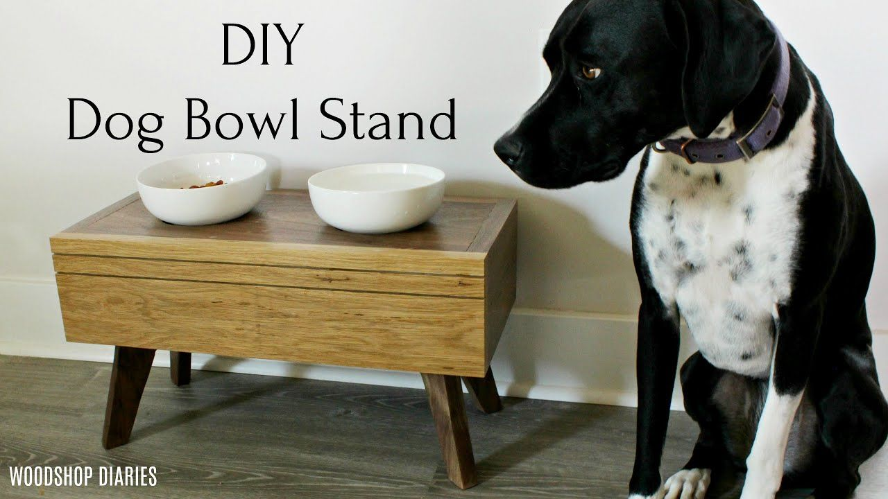 DIY Modern Elevated Dog Bowl Stand YouTube in 2020 (With