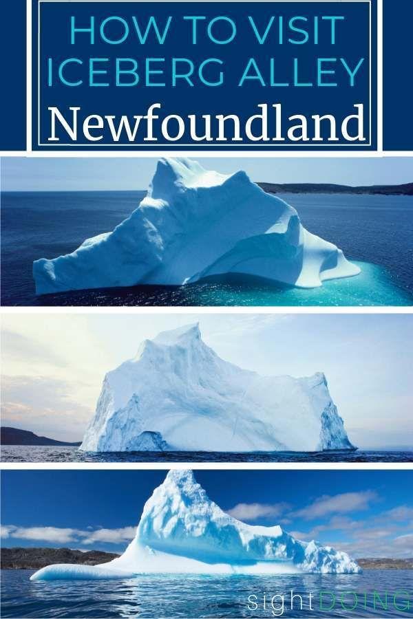 79 Canadian Atlantic Ideas New Brunswick Canada Travel Canada Road Trip