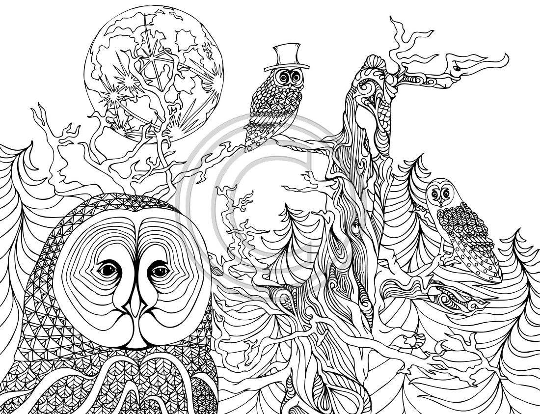 the night owls coloring pages colouring detailed advanced