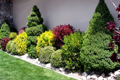 Landscaping with shrubs and bushes photos and design ideas for How to plant bushes in front of house