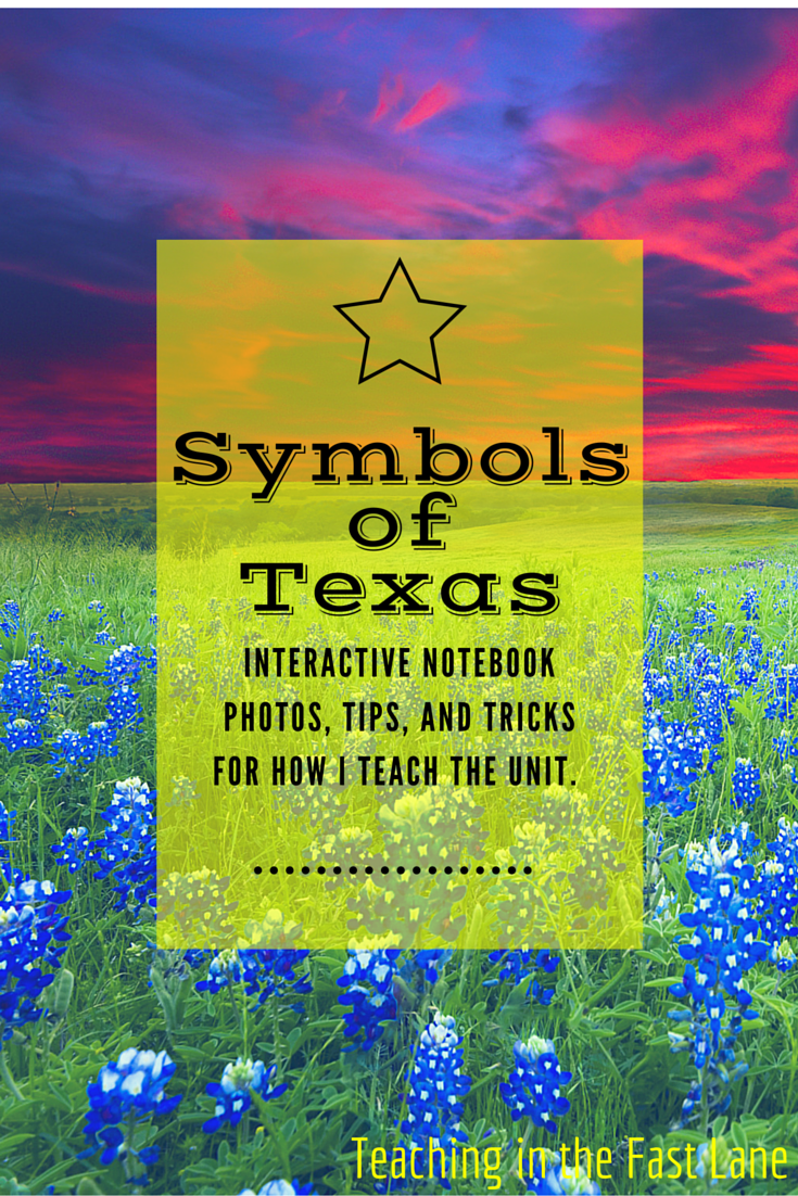 Photo of My Texas Symbols and Cultures Notebook