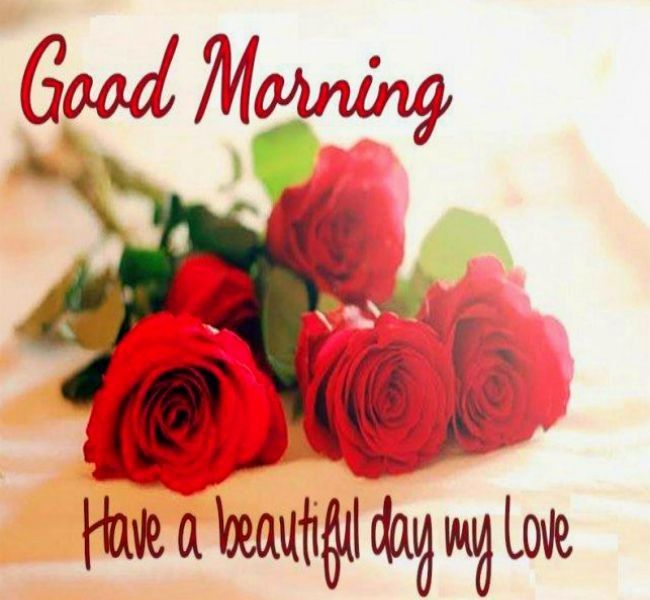 Good Morning My Love Quotes For Him Gorgeous Good Morninghave A Beautiful Day My Love Morning  Pinterest