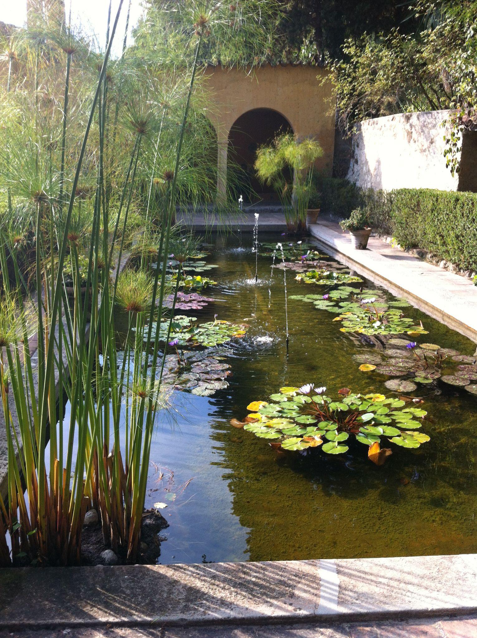 Jardin Serre De La Madone Menton France France Cote D Azur