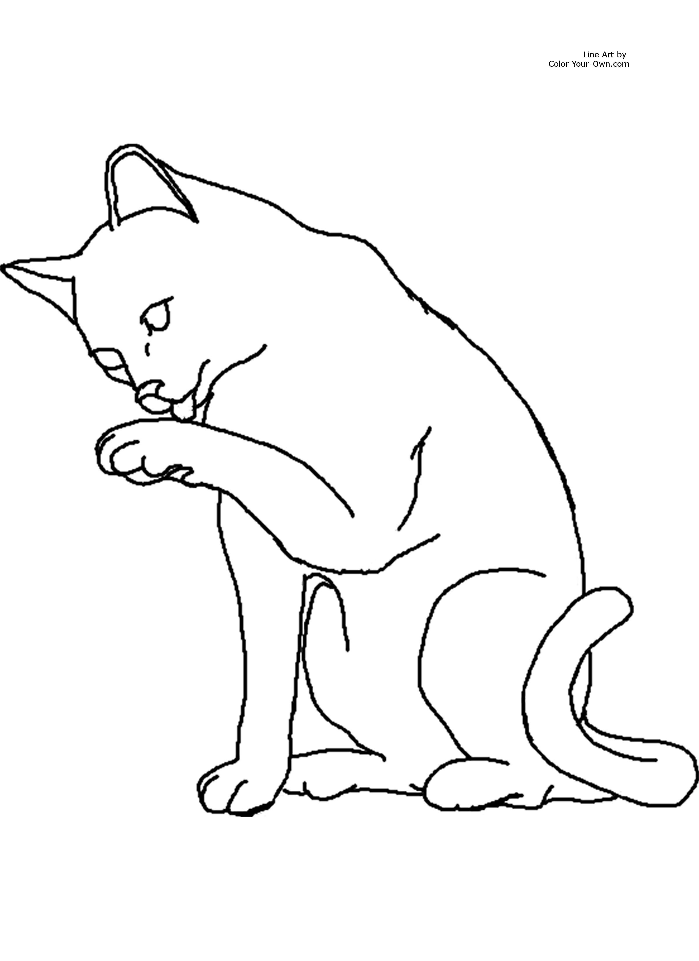Cat Color Pages Printable Printable Coloring Page For 8 5 By