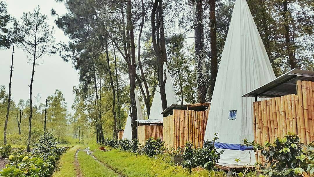 Apache Camp Lokasi Wisata Baru Yang Keren Di Malang Jawa Timur Tempat Penginapan Inspirasi