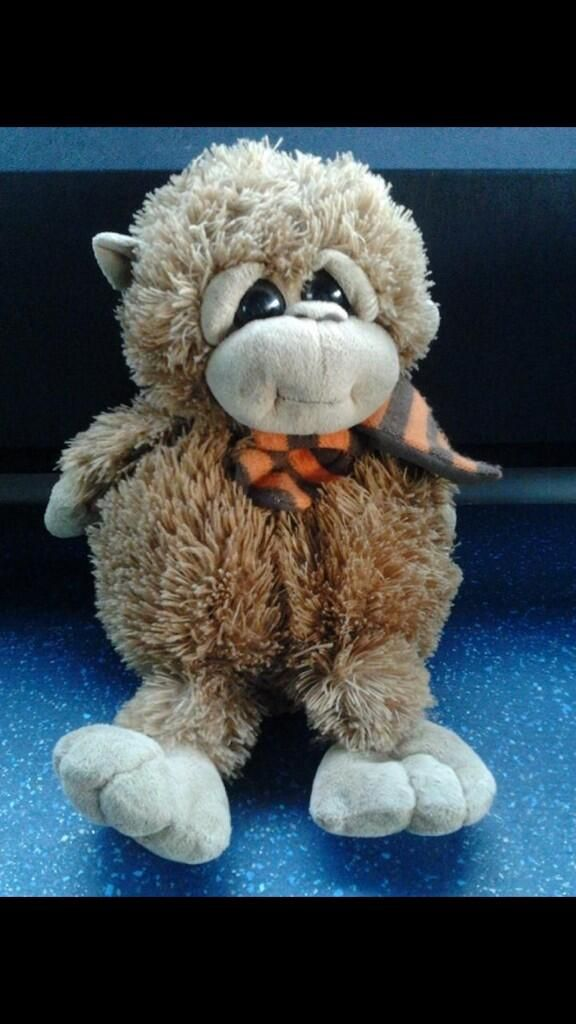 Help this little cuddly monkey find his owner, he was left
