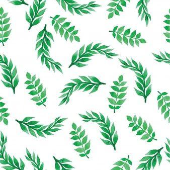 Baixe Decoracao Floral E Ornamentos Gratuitamente Green