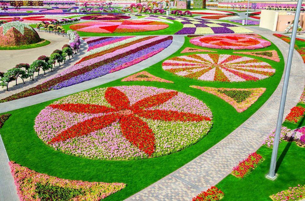 Уникальный цветочный парк Dubai Miracle Garden раскинулся