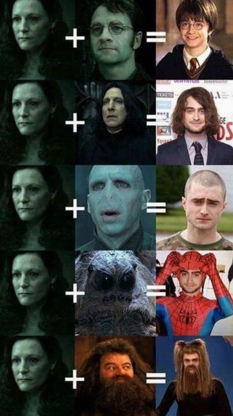 The 5 versions of Harry Potter.