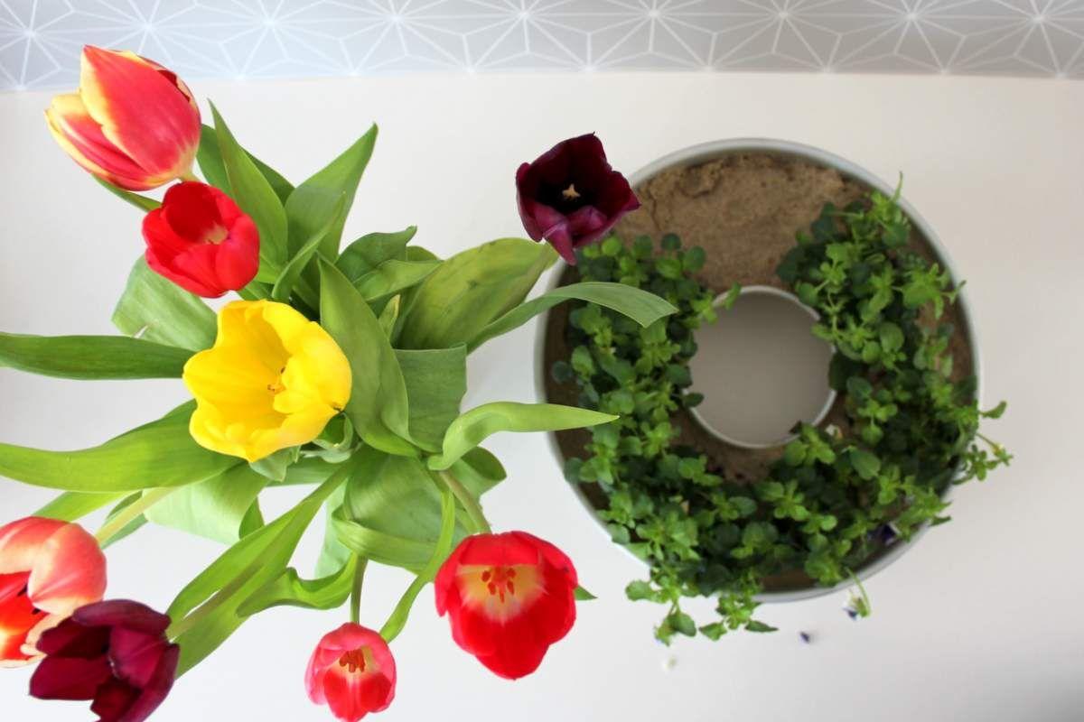Tulpen und vintage Kuchenform (13)