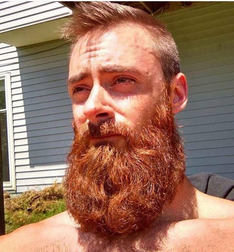 Bigbadbeards Mean Beard Via Instagram Com Https Www Instagram Com P Bvs0gbkhkjv Beard Life Hair And Beard Styles Beard Images