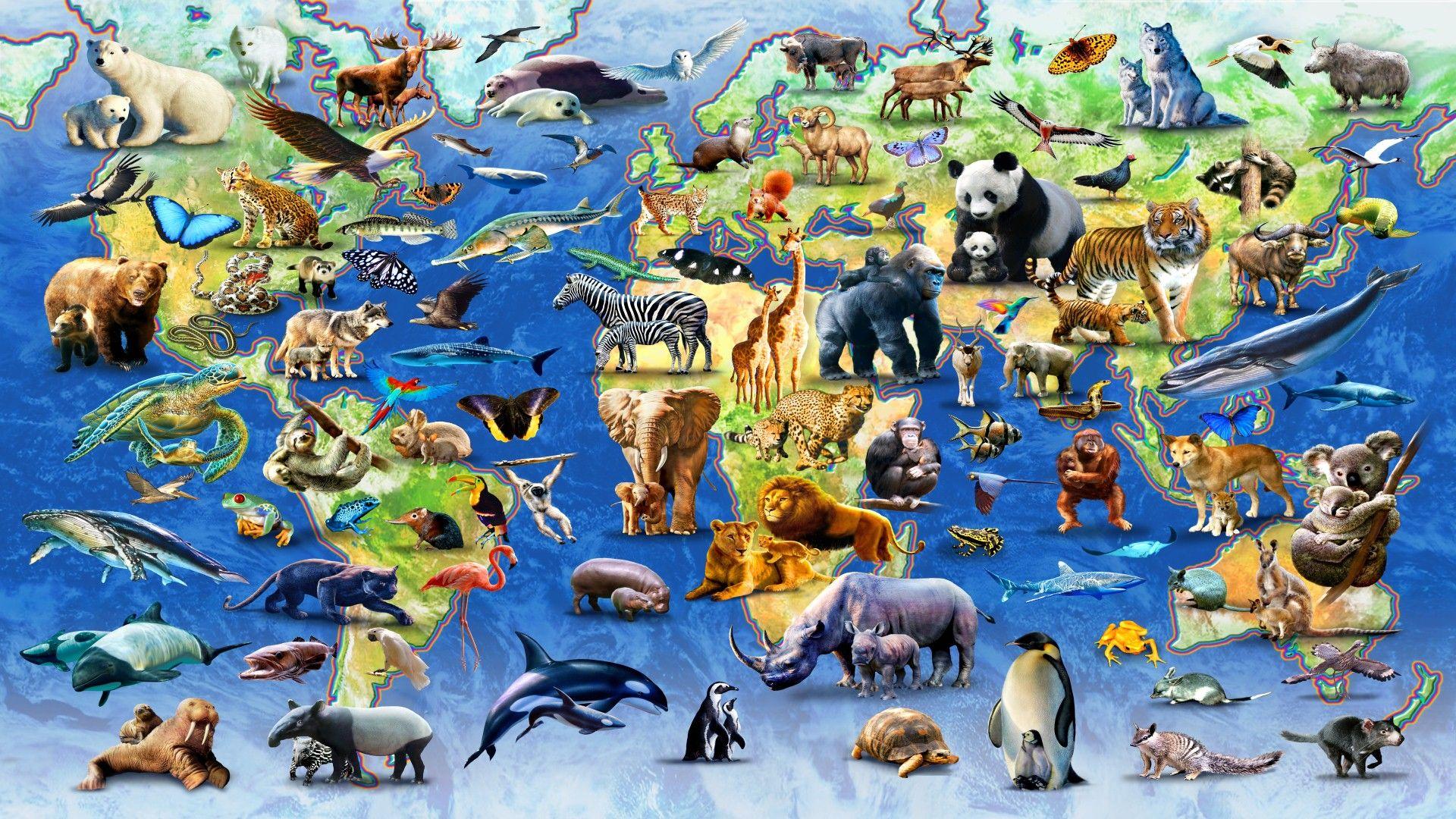HD jpeg Map of endangered species Endangered animals