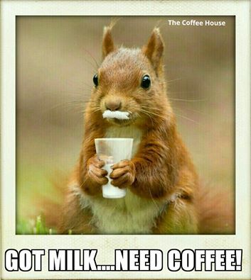 Pin On Coffee Tea Coco Plz