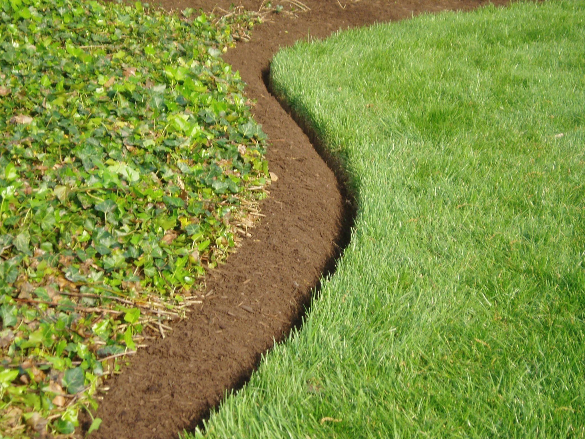 The Best Landscape Edging To Install Around Your Flower Beds Natural Landscape Modern Design In 2020 Landscape Edging Metal Landscape Edging Lawn Edging