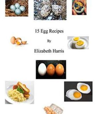 15 egg recipes pdf cookbooks pinterest egg and recipes 15 egg recipes pdf forumfinder Images