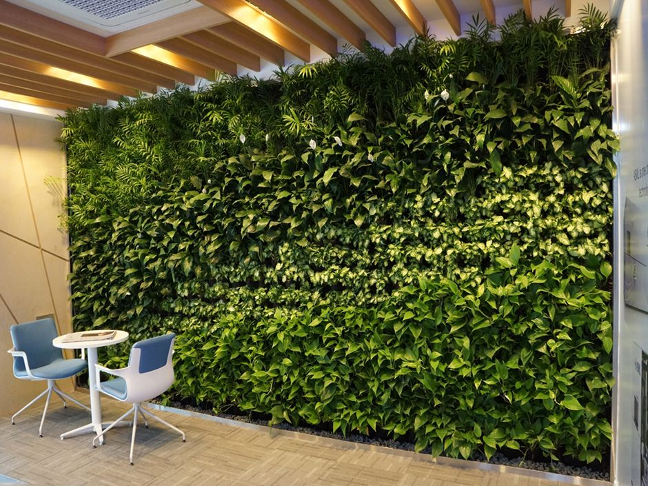 Opci n de muro verde muros verdes pinterest verde for Muros y fachadas verdes jardines verticales