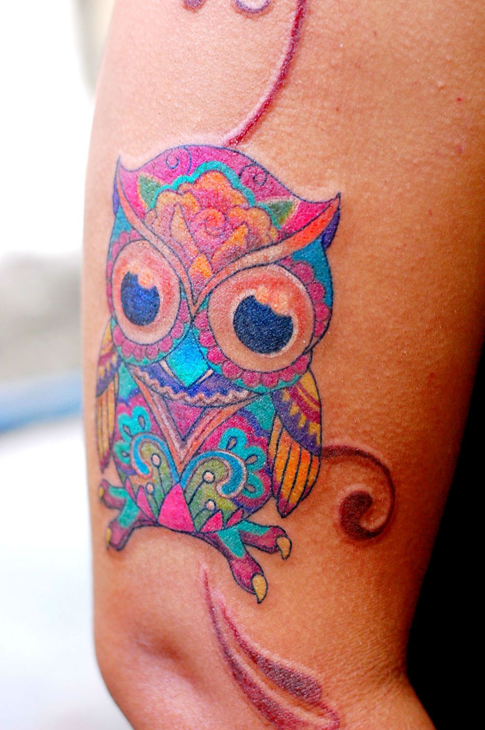 Owl Tattoo Colorful Chouette Tatouage Tatouage Tatouage Oiseau