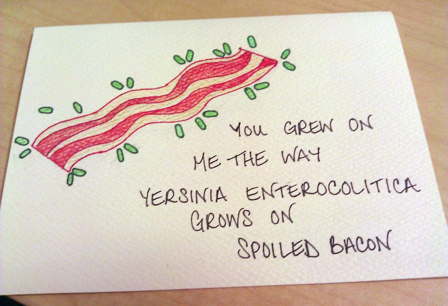 Using a bacon reference weird science pinterest bacon using a bacon reference expocarfo Images