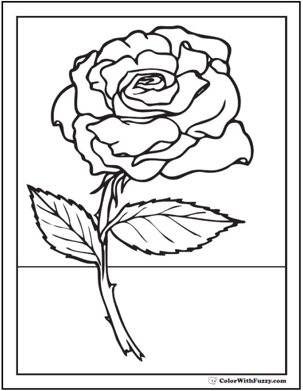 Colouring Sheet Rose Rose Coloring Pages Flower Coloring Pages Coloring Pages