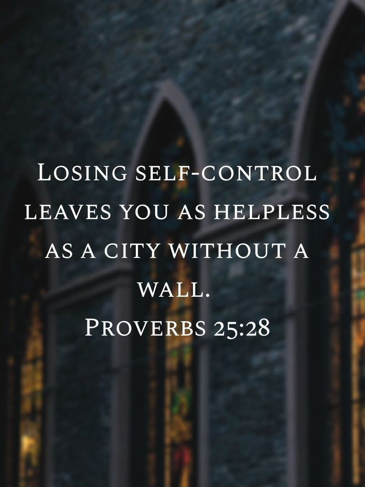 Proverbs 2528 Bible truth, Scripture quotes, Verse quotes