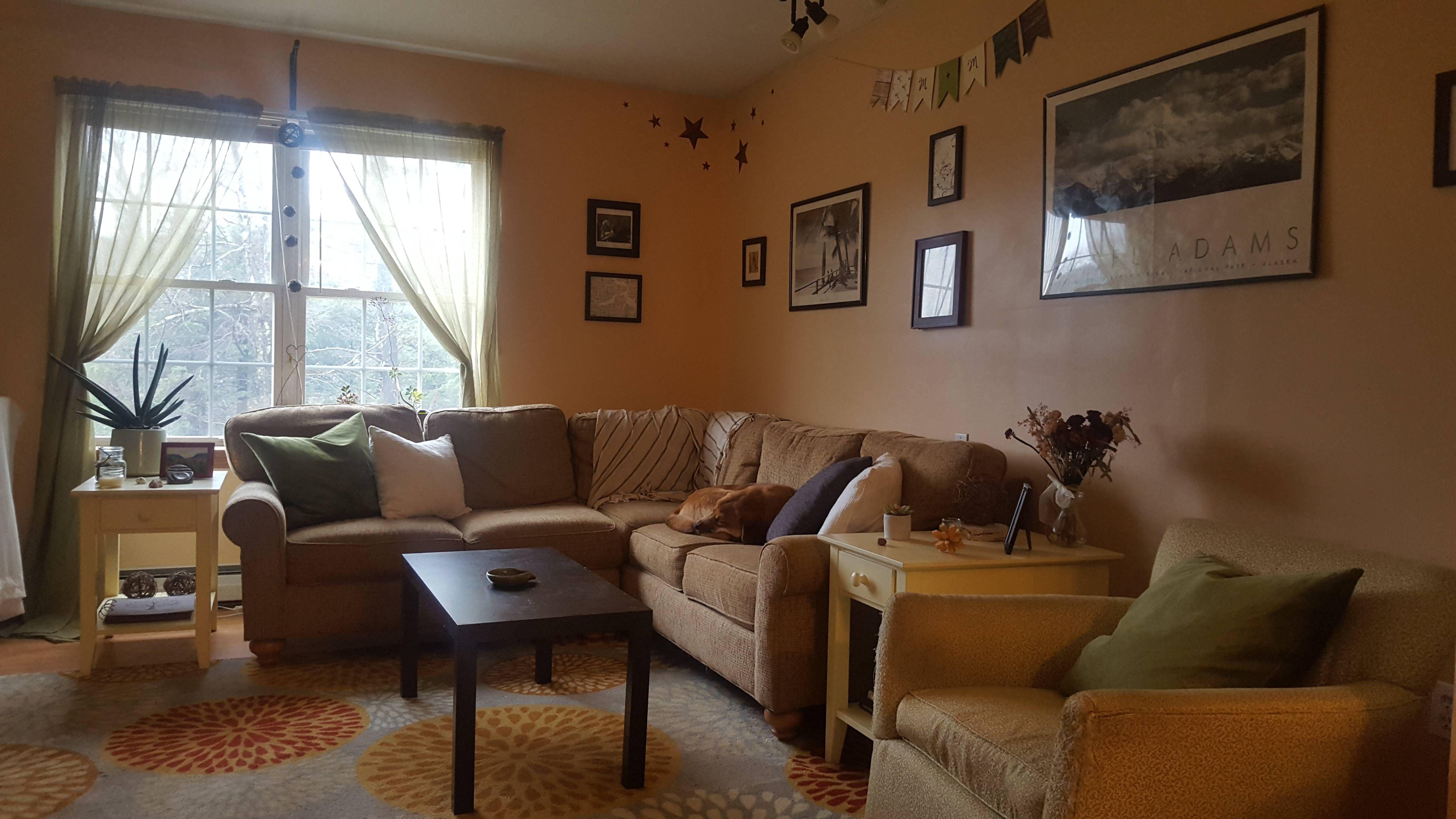 Our mountainside living room in Ashburnham MA #home #homedesigns #design #homeideas #roomideas #room #rooms #house #housedesigns #roomdesigns
