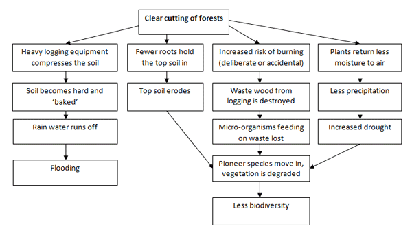 Sample essay for academic ielts writing task topic  flow chart also rh pinterest