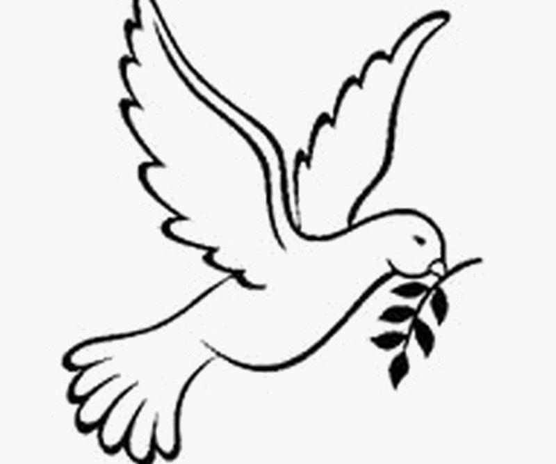 Dessins de colombe 35 coloriages imprimer page 2 orar dessin colombe dessin et - Dessin sur la paix ...