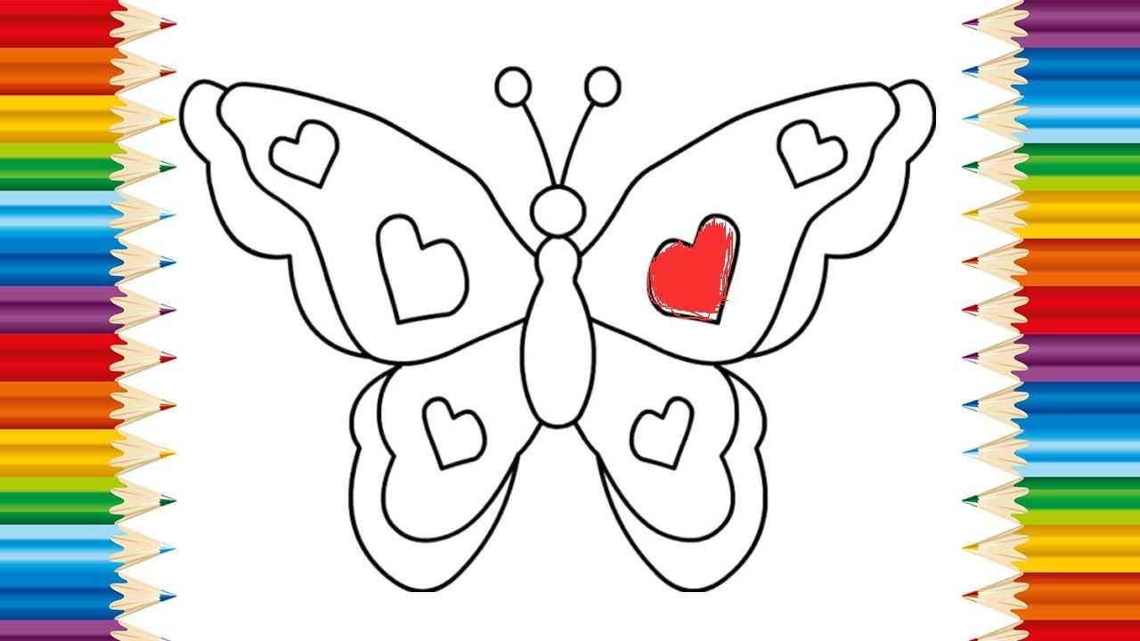 BUTTERFLY Coloring page for KID and Learning How to Draw butterfly ...