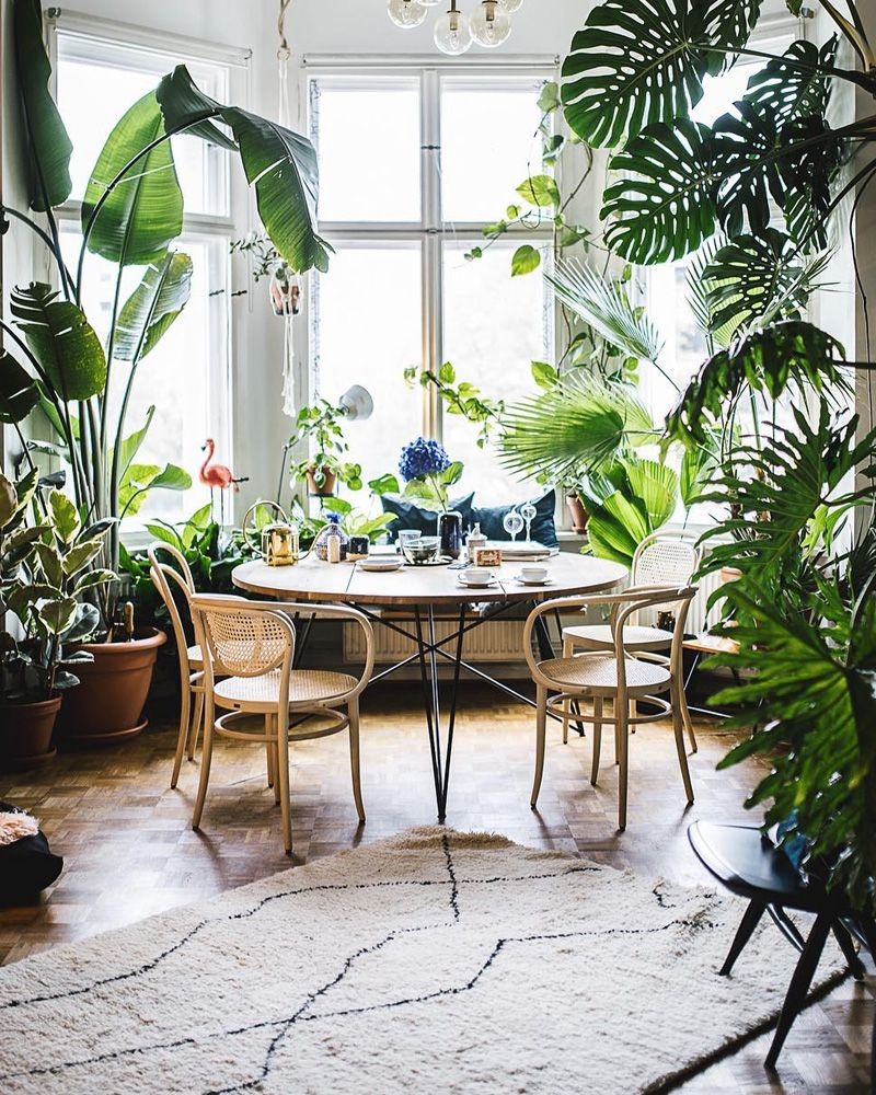 Deco Jungle Chambre Adulte �pingl� sur home decor