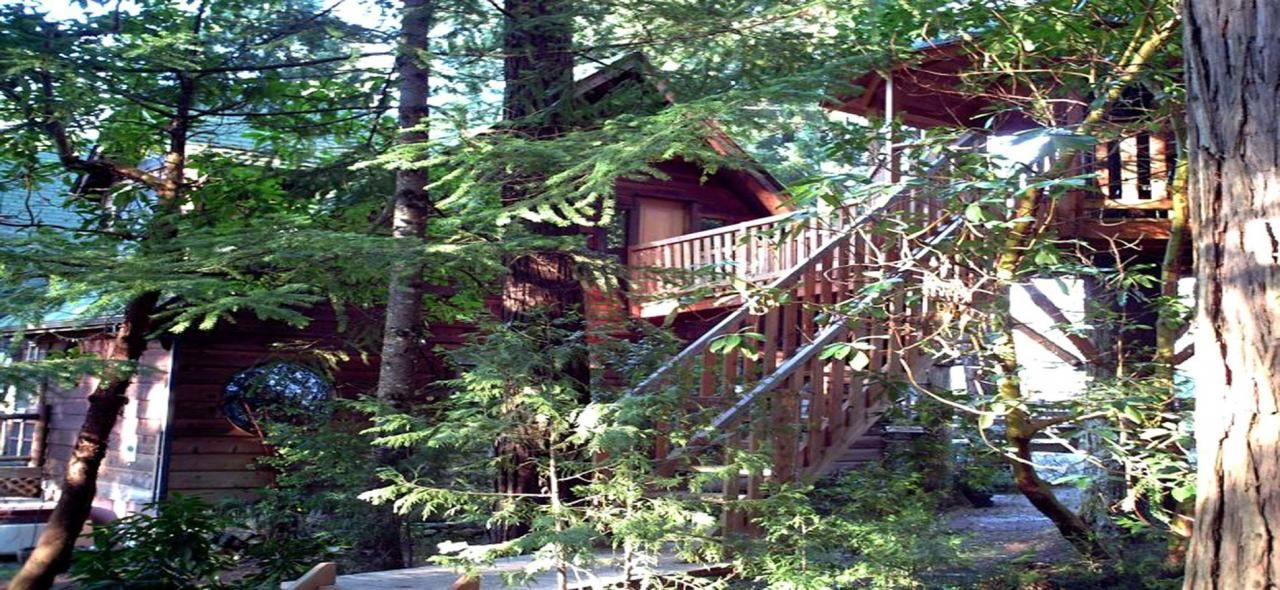 Treehouse Hotel In Oregon Part - 47: Amazing Oregon Tree Houses That Allow Kids Too! See More. Treehouse Hotel