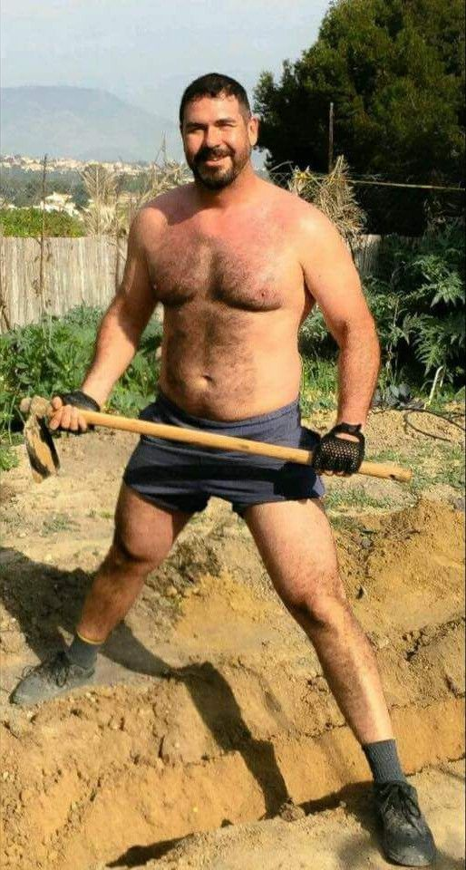 daddy bear gets the work done