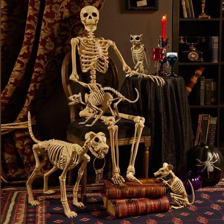Human and Animal Skeletons for Halloween Parties HALLOWEEN PARTY - how to decorate for halloween party