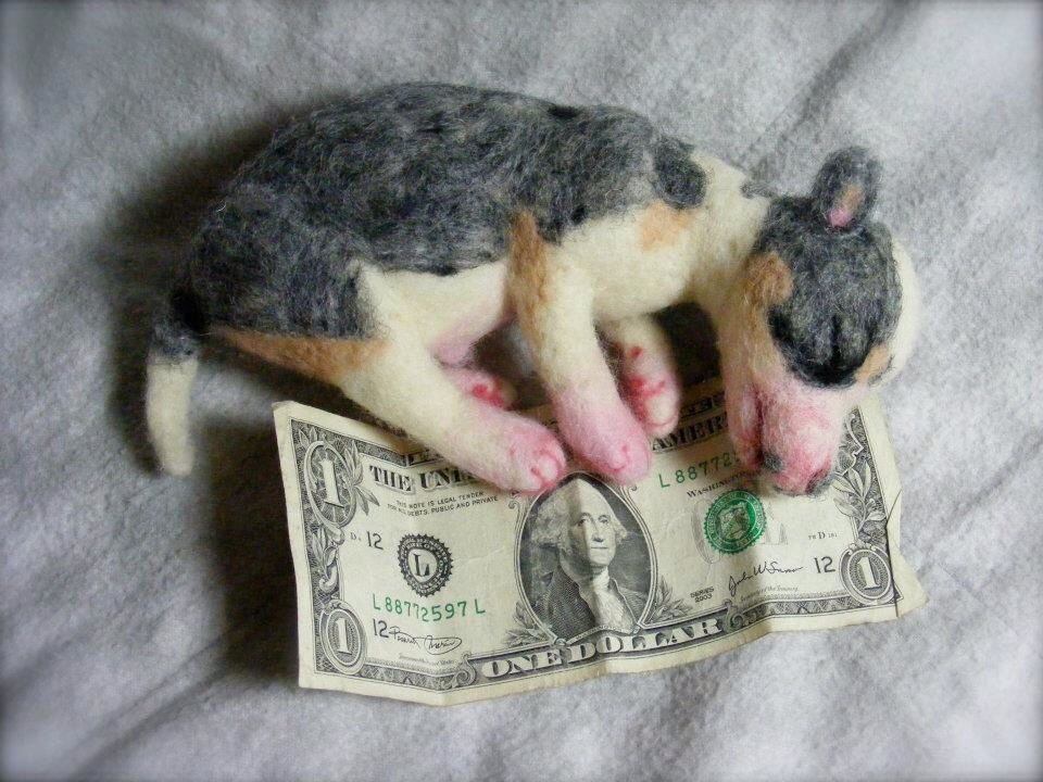 Needle Felted Newborn Chihuahua Puppy Created Close To Life Size