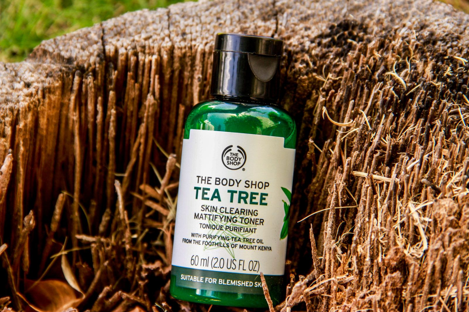 The Body Shop's Tea Tree Skin Clearing Facial Wash & Toner - SHEVIIMC