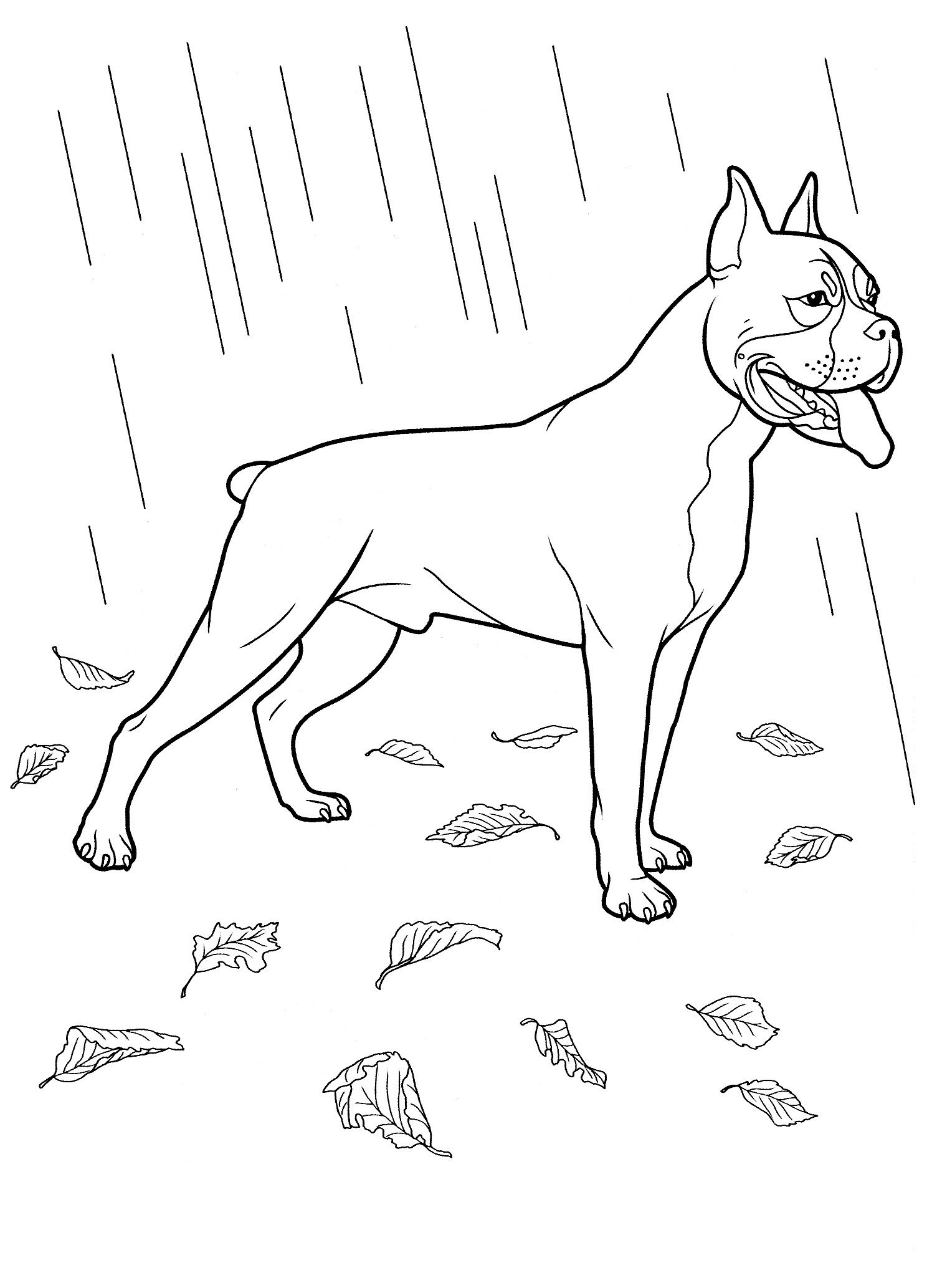 dog_coloring_pages_30 Teenagers coloring pages | Värityskuvia koirat ...