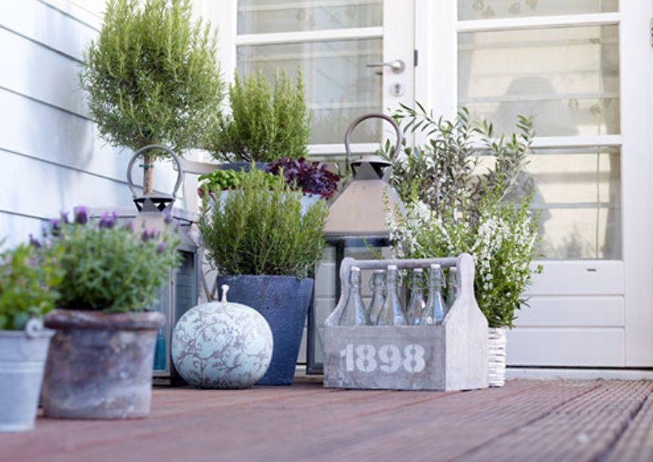 Plantas botellas y faroles plantas Pinterest Faroles, Con - decoracion de terrazas con plantas