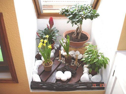 como hacer un mini jardin zen buscar con google decoraci n de jardines pinterest bonsai. Black Bedroom Furniture Sets. Home Design Ideas