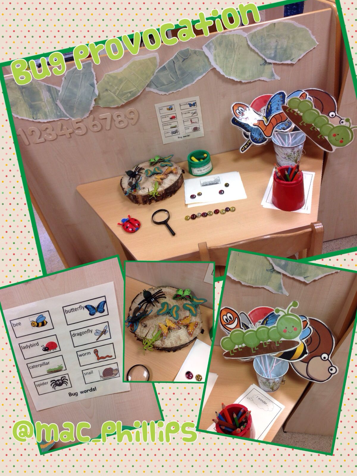 Bug Investigation Area Complete With Ladybirds And Bees