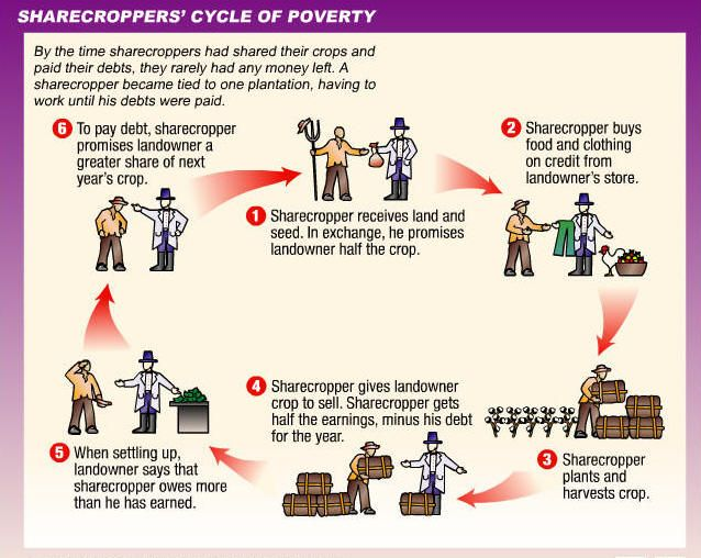 cycle of sharecropping   Grange, Alliance, Populists   Pinterest ...