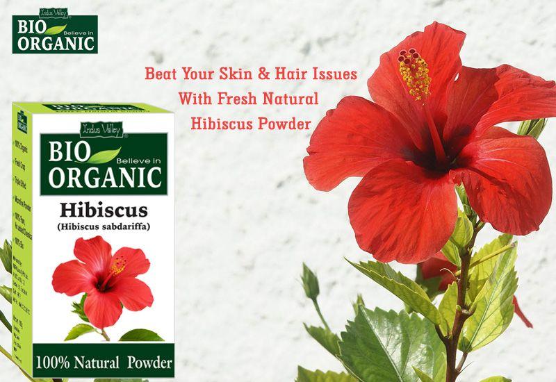 Organic Hibiscus Flower Powder Ayurvedic Herbs Natural Conditioner Hibiscus