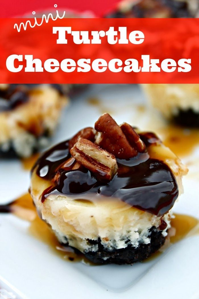 Mini Turtle Cheesecakes | Best Recipes Ever