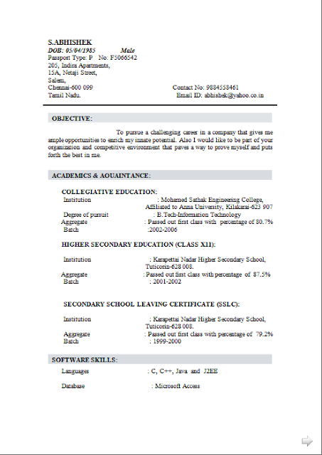Curriculum Vitae Ms Word Free Download Sample Template Excellent