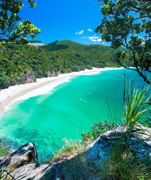 Beach Island: The Most Beautiful Beaches In New Zealand In 2020