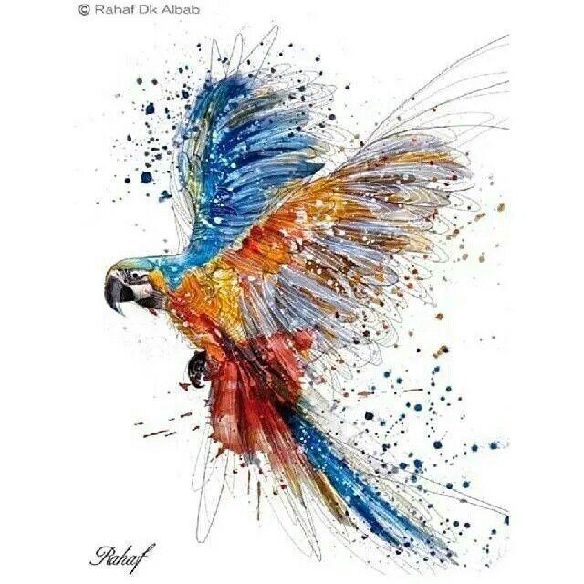 dibujos de animales a color - Buscar con Google