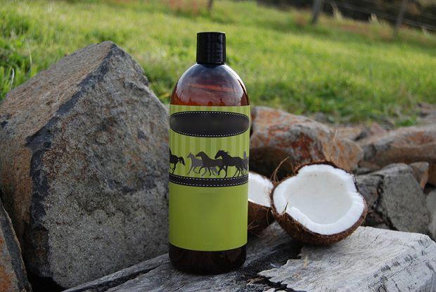 فوائد زيت جوز الهند للخيول Coconut Oil Coconut Oils