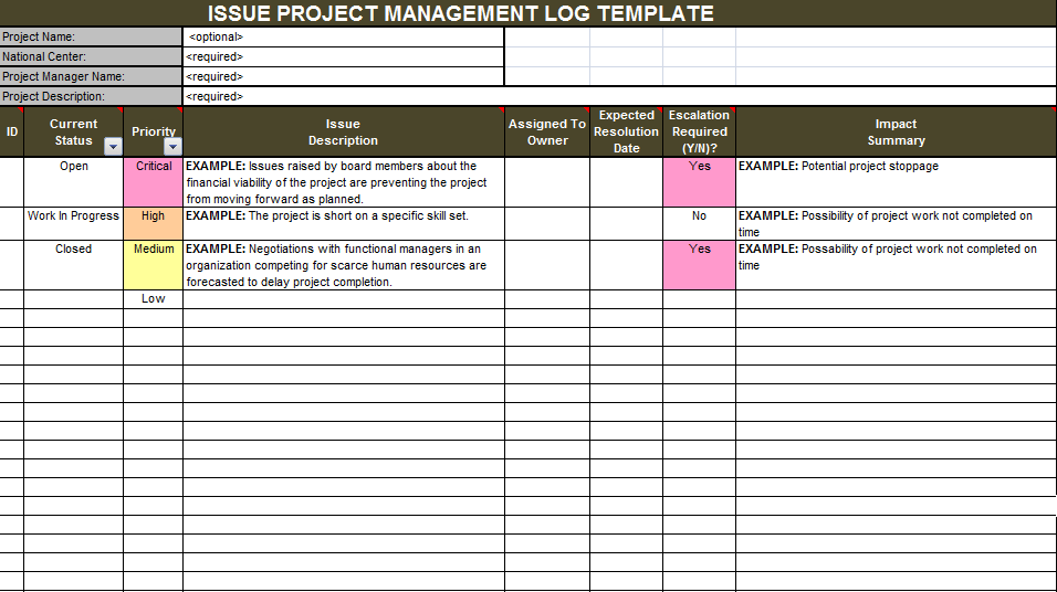 Download Issue Project Management Templates – Project Tracking Template