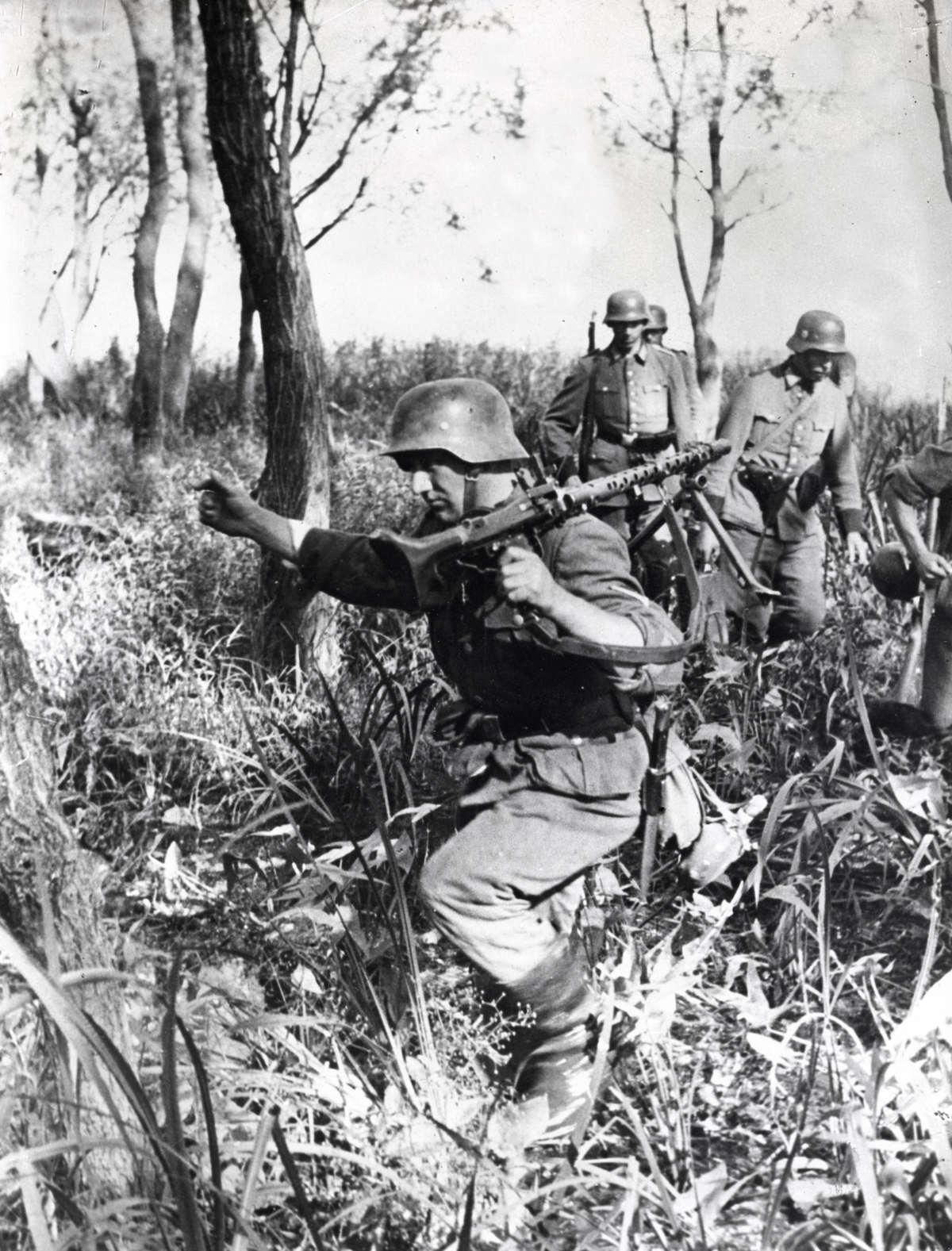 Image result for ww2 German soldiers in forest
